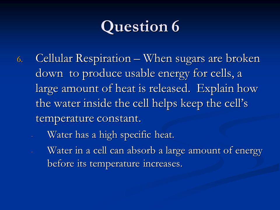 Question 6 6.