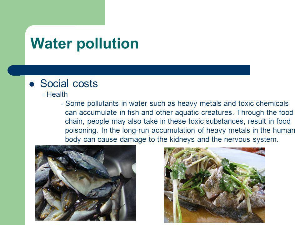 Social costs - Health - Some pollutants in water such as heavy metals and toxic chemicals can accumulate in fish and other aquatic creatures. Through