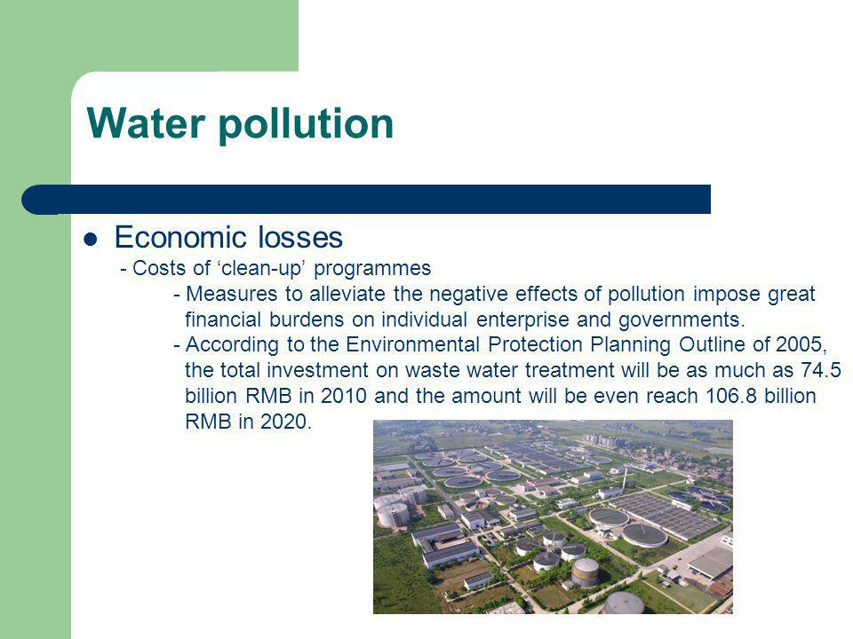 Economic losses - Costs of clean-up programmes - Measures to alleviate the negative effects of pollution impose great financial burdens on individual
