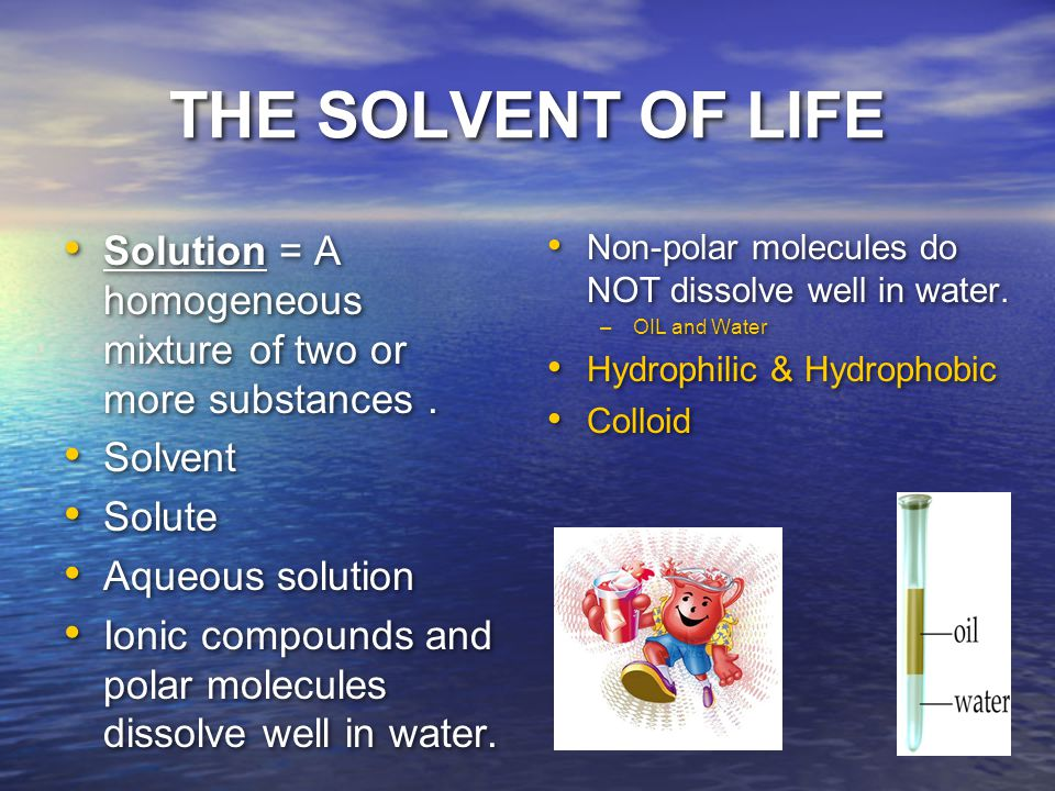 THE SOLVENT OF LIFE Solution = A homogeneous mixture of two or more substances.