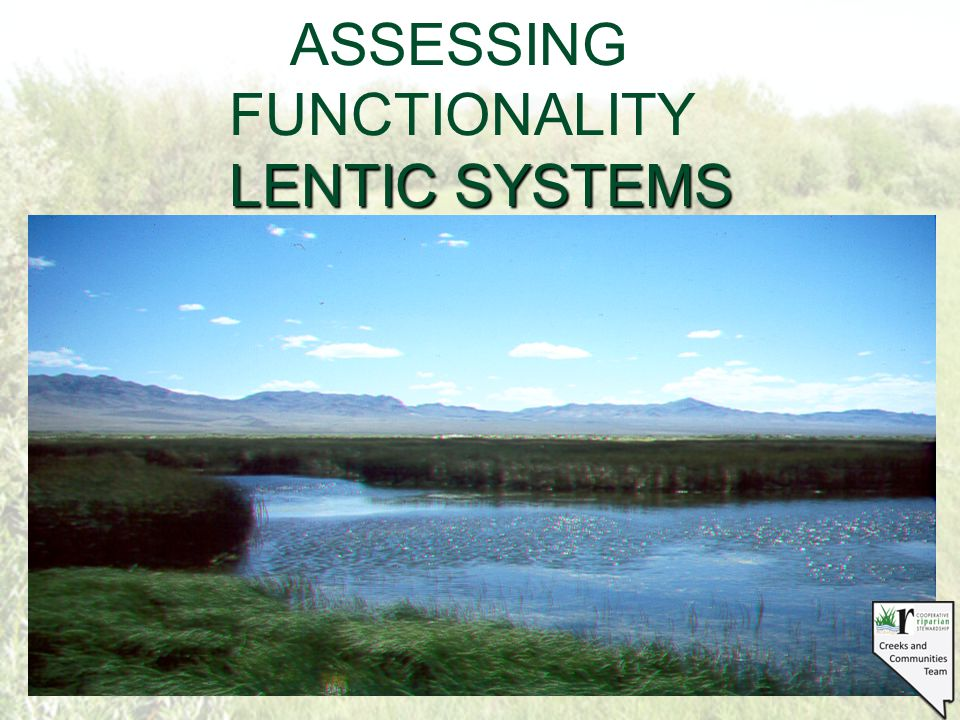STANDING WATER HABITAT SUCH AS LAKES, PONDS, SEEPS, BOGS AND MEADOWS LENTIC