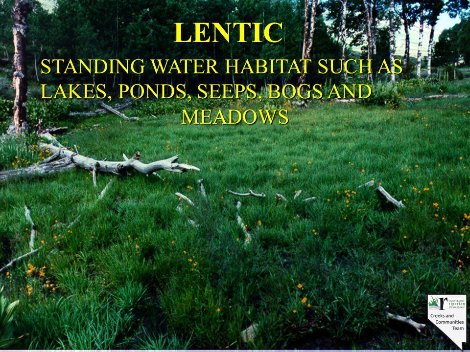 Attributes and Processes Biotic community: Aquatic plants Recruitment/reproduction Nutrient use