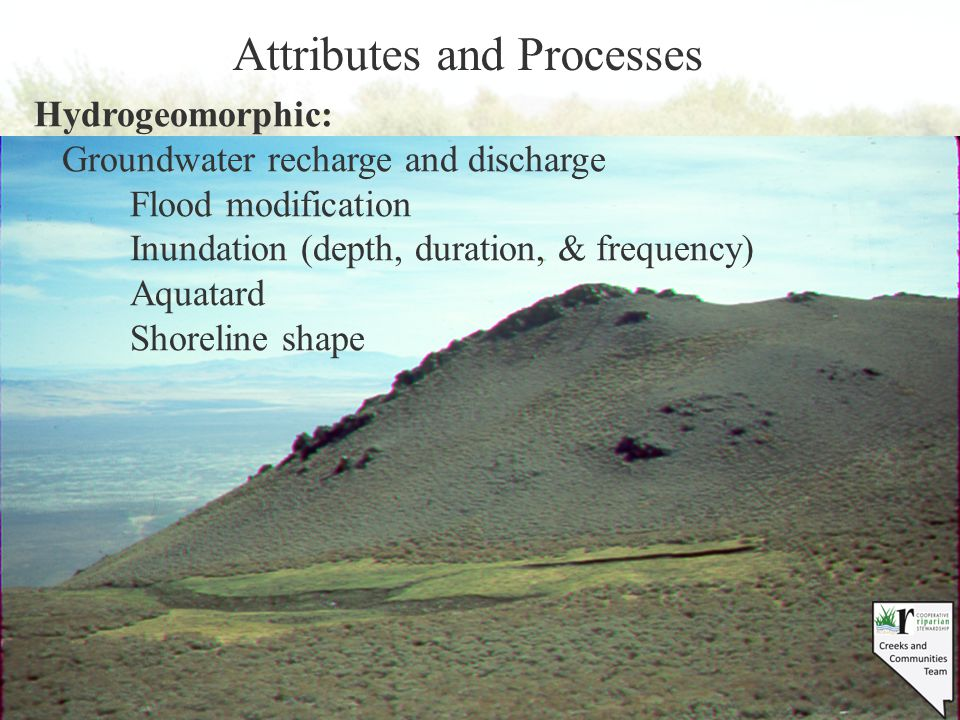 Attributes and Processes Hydrogeomorphic: Groundwater recharge and discharge Flood modification Inundation (depth, duration, & frequency) Aquatard Sho