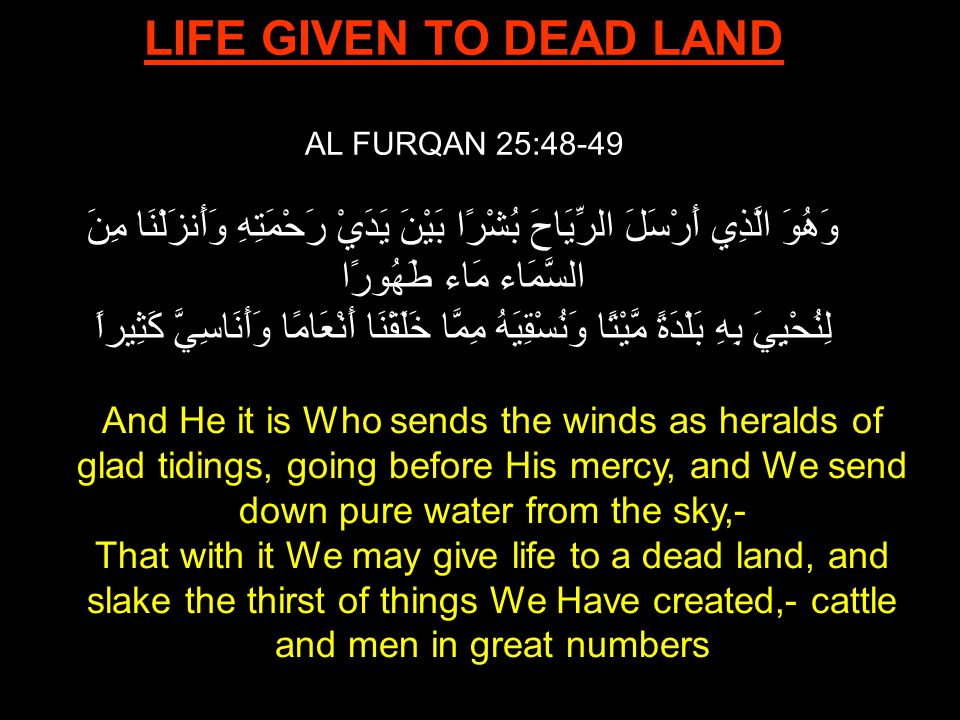 LIFE GIVEN TO DEAD LAND AL FURQAN 25:48-49 وَهُوَ الَّذِي أَرْسَلَ الرِّيَاحَ بُشْرًا بَيْنَ يَدَيْ رَحْمَتِهِ وَأَنزَلْنَا مِنَ السَّمَاء مَاء طَهُورًا لِنُحْيِيَ بِهِ بَلْدَةً مَّيْتًا وَنُسْقِيَهُ مِمَّا خَلَقْنَا أَنْعَامًا وَأَنَاسِيَّ كَثِيراً And He it is Who sends the winds as heralds of glad tidings, going before His mercy, and We send down pure water from the sky,- That with it We may give life to a dead land, and slake the thirst of things We Have created,- cattle and men in great numbers
