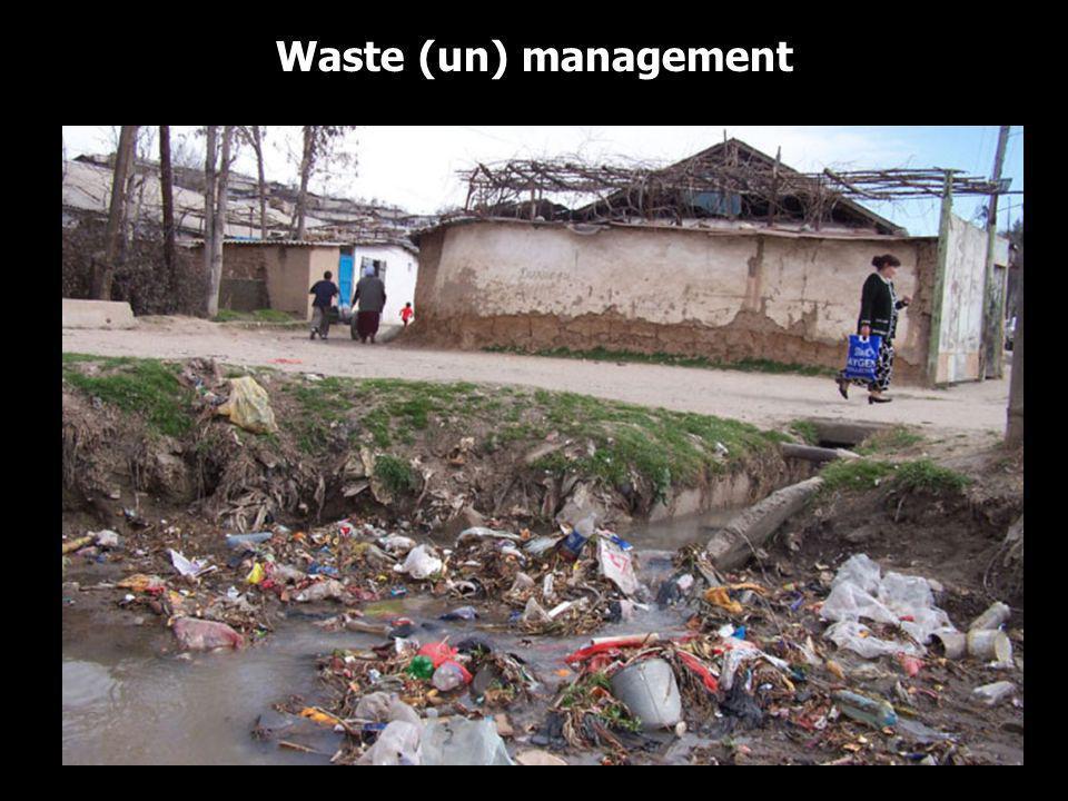Waste (un) management