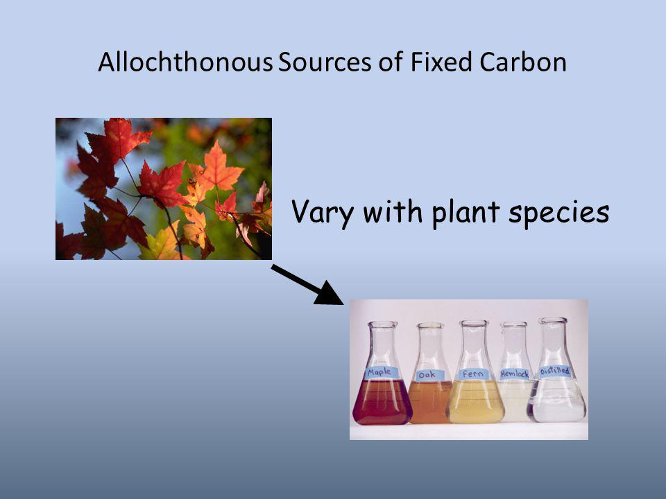 Allochthonous Sources of Fixed Carbon Vary with plant species