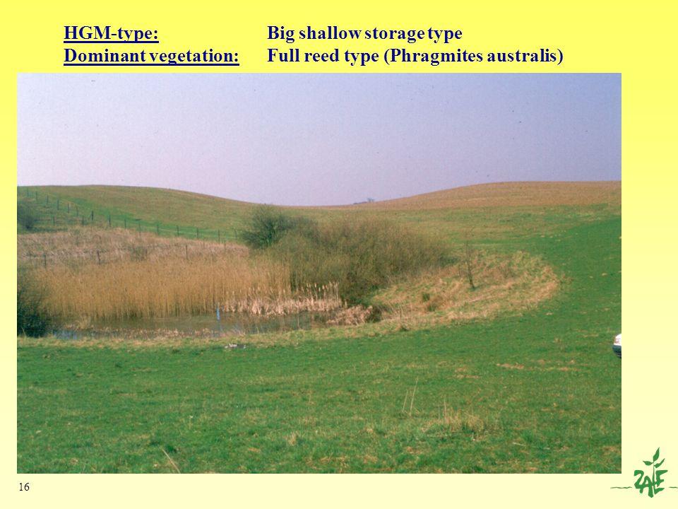 16 HGM-type: Big shallow storage type Dominant vegetation: Full reed type (Phragmites australis)