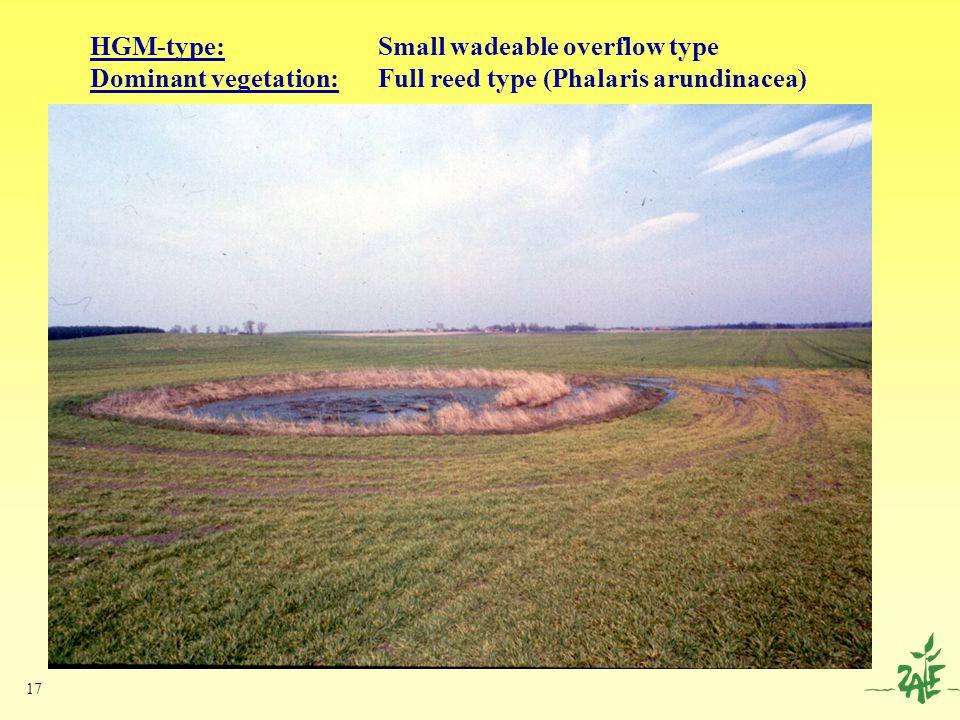 17 HGM-type: Small wadeable overflow type Dominant vegetation: Full reed type (Phalaris arundinacea)