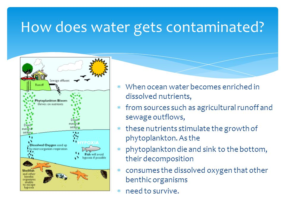 How does water gets contaminated.