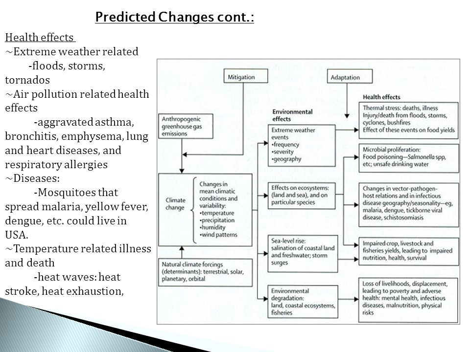 Health effects ~Extreme weather related -floods, storms, tornados ~Air pollution related health effects -aggravated asthma, bronchitis, emphysema, lung and heart diseases, and respiratory allergies ~Diseases: -Mosquitoes that spread malaria, yellow fever, dengue, etc.