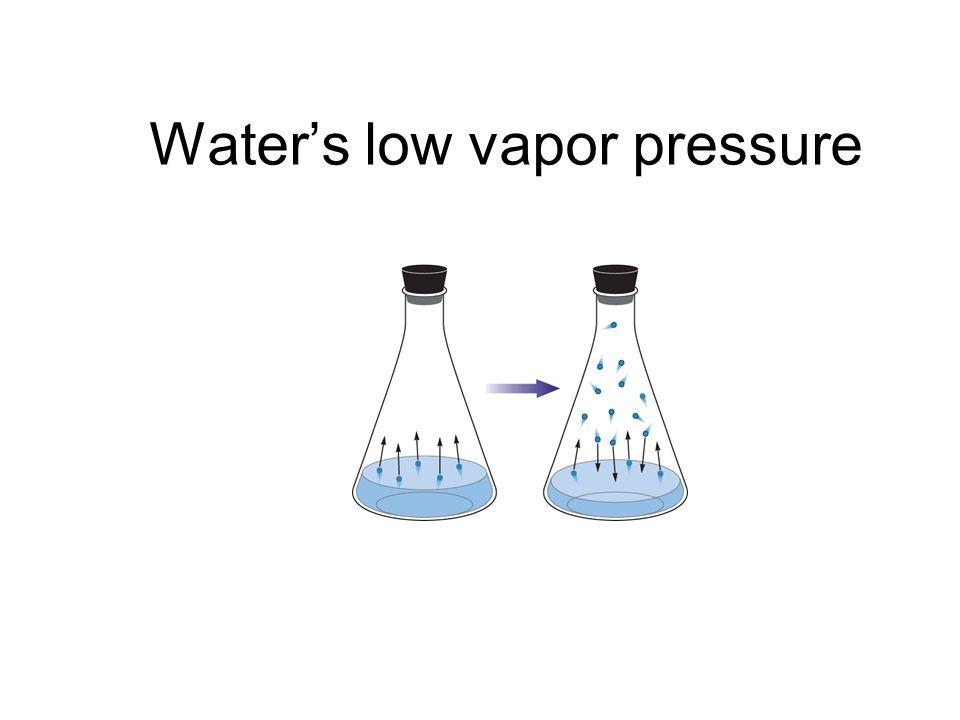 Waters low vapor pressure