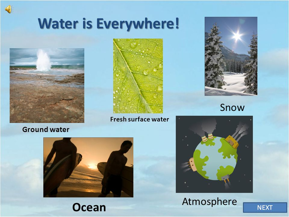 Correct! The water cycle is powered by the heat of the sun NEXT