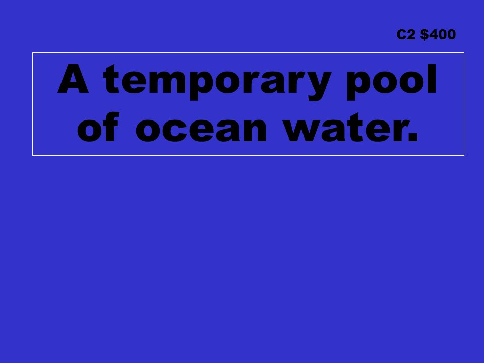 C2 $400 A temporary pool of ocean water.