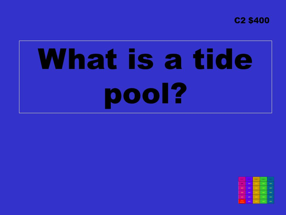 C2 $400 What is a tide pool