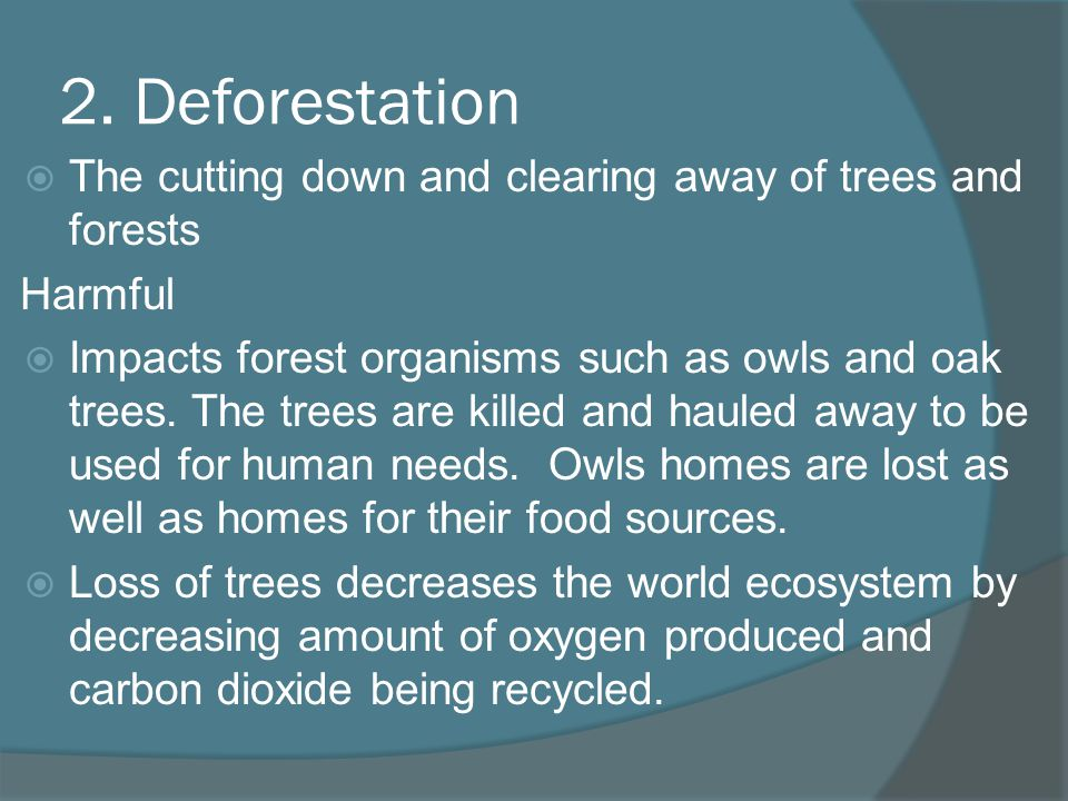 2. Deforestation The cutting down and clearing away of trees and forests Harmful Impacts forest organisms such as owls and oak trees. The trees are ki