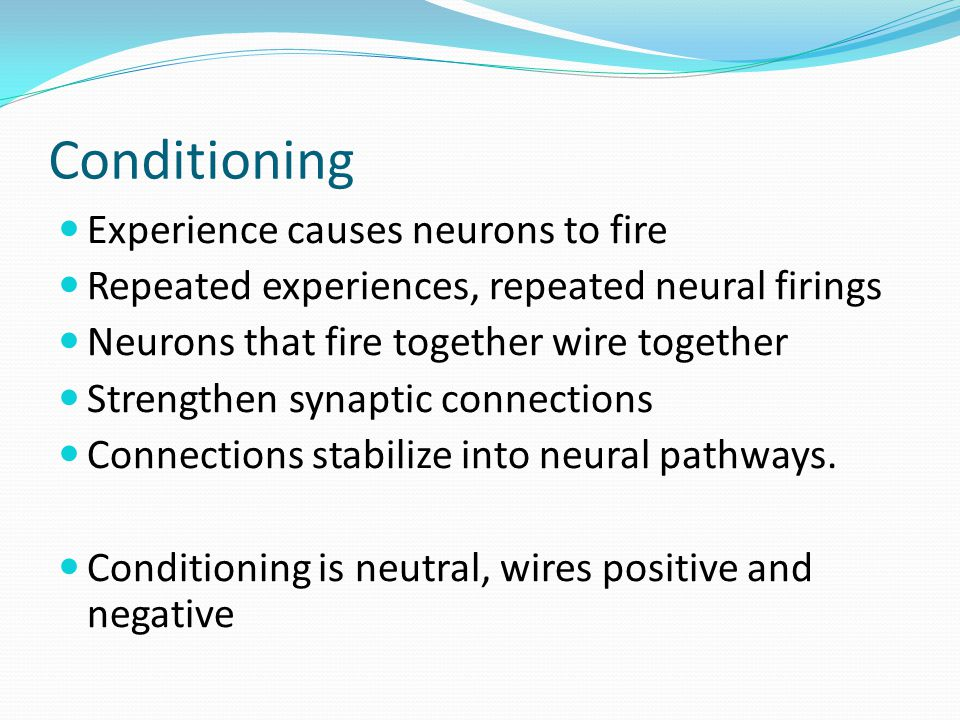 Conditioning Experience causes neurons to fire Repeated experiences, repeated neural firings Neurons that fire together wire together Strengthen synaptic connections Connections stabilize into neural pathways.