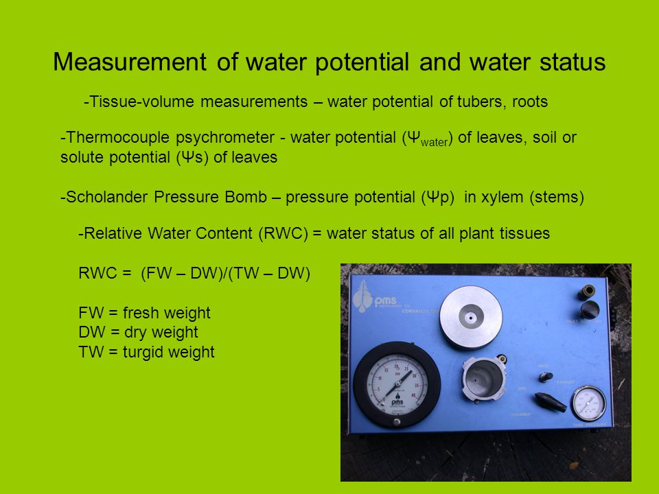 Measurement of water potential and water status -Thermocouple psychrometer - water potential (Ψ water ) of leaves, soil or solute potential (Ψs) of le