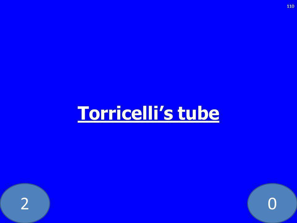 20 Torricellis tube 110