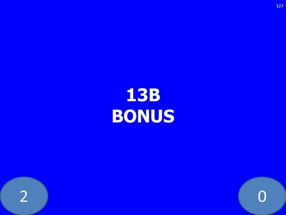 20 13B BONUS 127