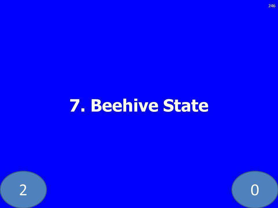 20 7. Beehive State 246