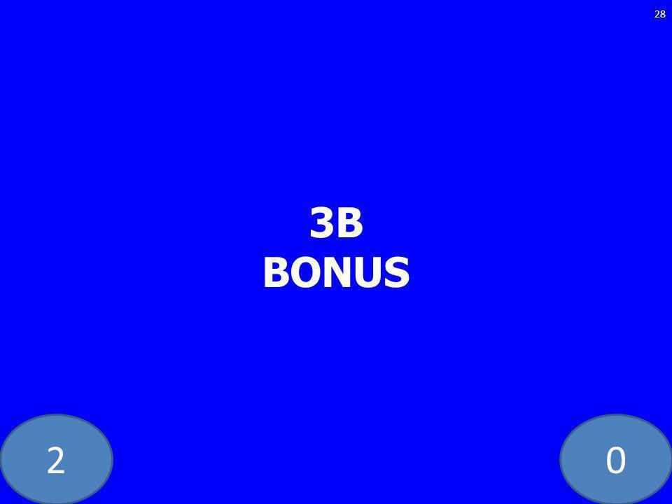 20 3B BONUS 28