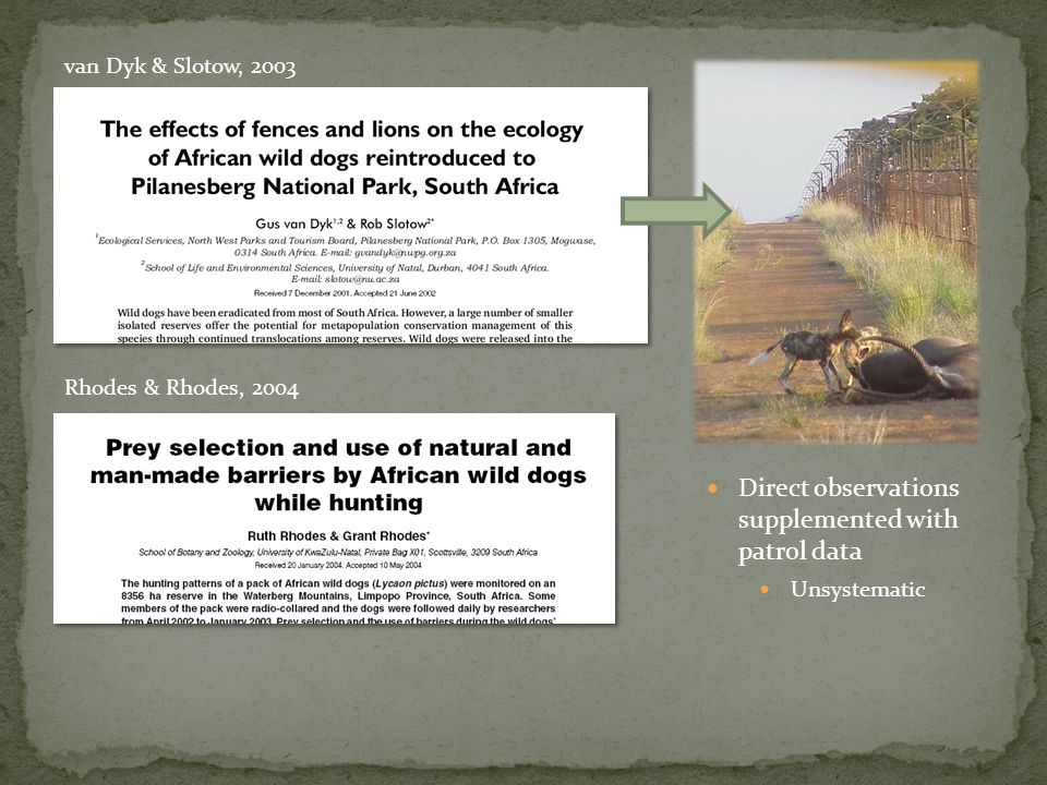 Do patterns of prey selection support earlier findings from Save Valley Conservancy.