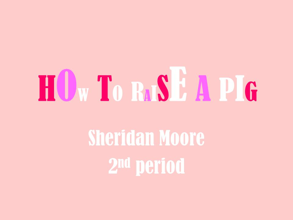 HOW TO RAISE A PIGHOW TO RAISE A PIG Sheridan Moore 2 nd period