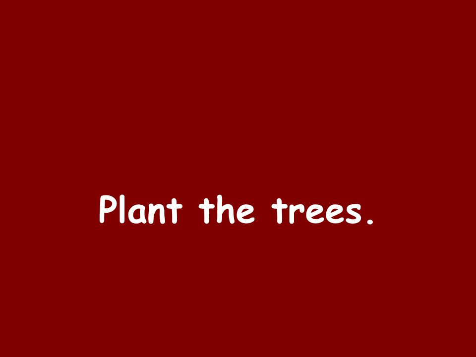 Plant the trees.