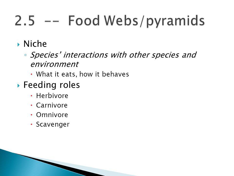 Niche Species interactions with other species and environment What it eats, how it behaves Feeding roles Herbivore Carnivore Omnivore Scavenger