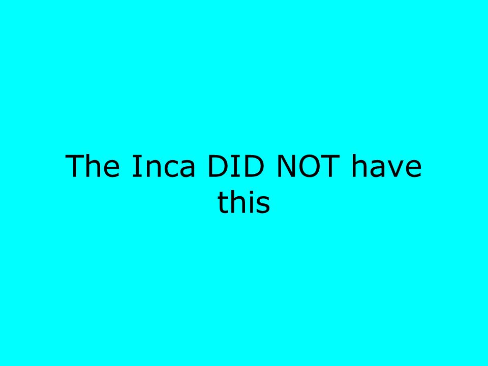 The Inca DID NOT have this