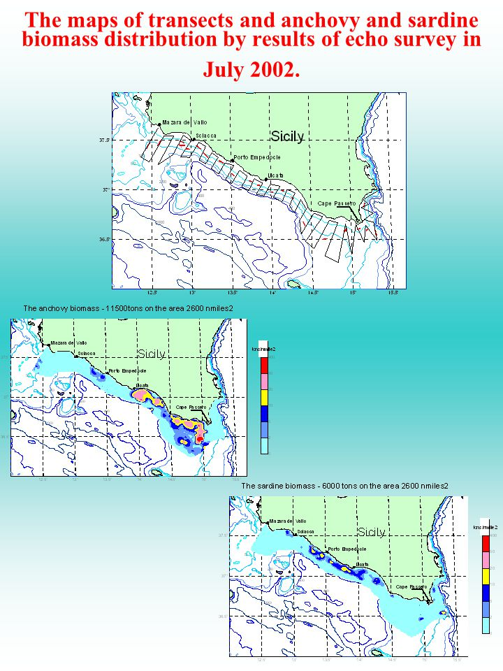 The maps of transects and anchovy and sardine biomass distribution by results of echo survey in July 2002.