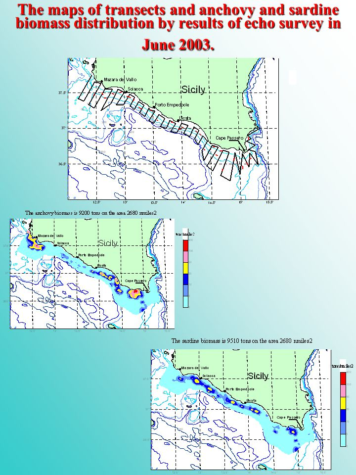 The maps of transects and anchovy and sardine biomass distribution by results of echo survey in June 2003.