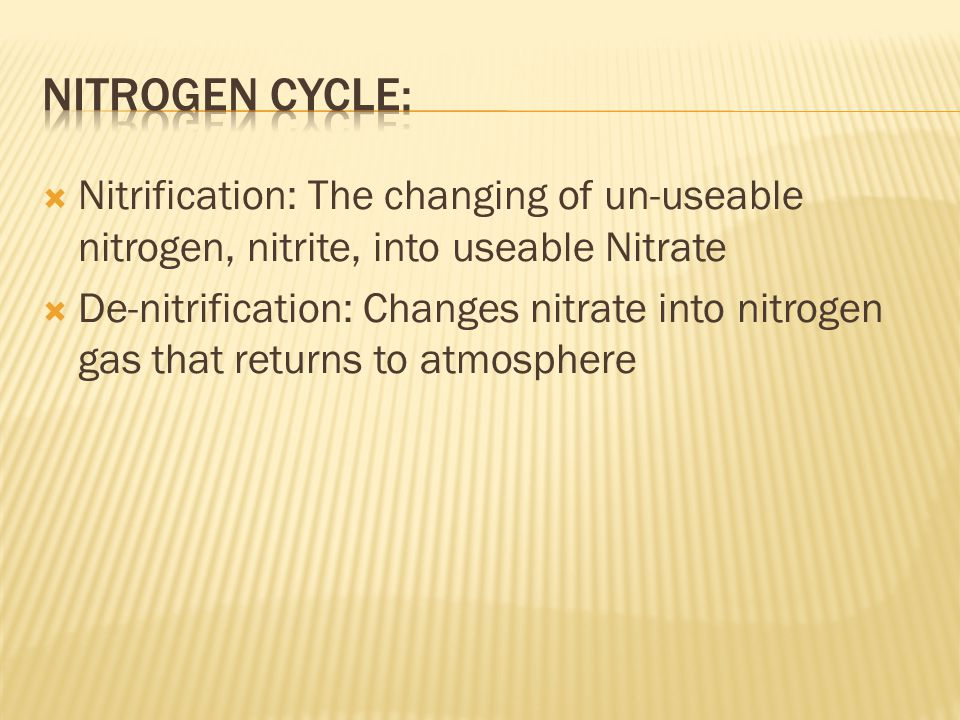 Nitrogen Is needed to make proteins (DNA, RNA, Enzymes) Is a process where nitrogen circulates among the air, soil, water, and organisms Nitrogen Fixa