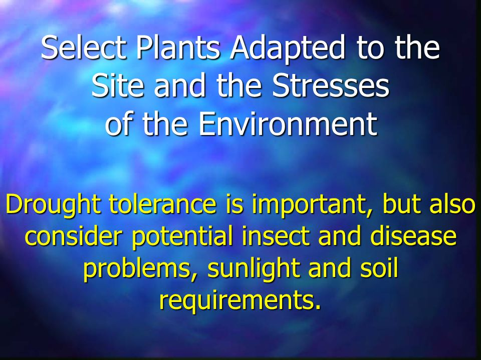Select Plants Adapted to the Site and the Stresses of the Environment Drought tolerance is important, but also consider potential insect and disease problems, sunlight and soil requirements.