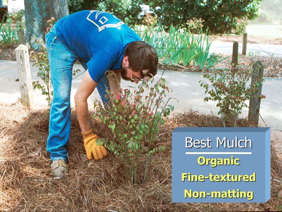 Best Mulch OrganicFine-texturedNon-matting