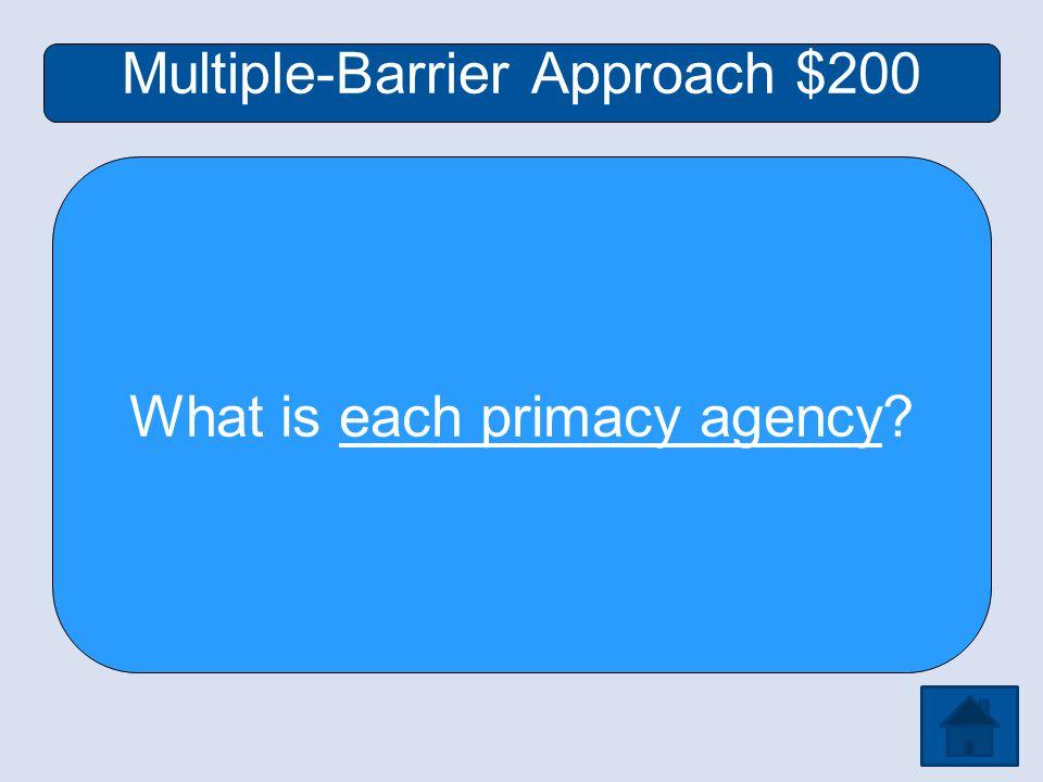 Multiple-Barrier Approach $200 What is each primacy agency