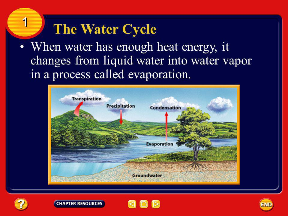 The Water Cycle 1 1 Water on Earths surfacein oceans, lakes, rivers, and streamsabsorbs energy and stores it as heat.