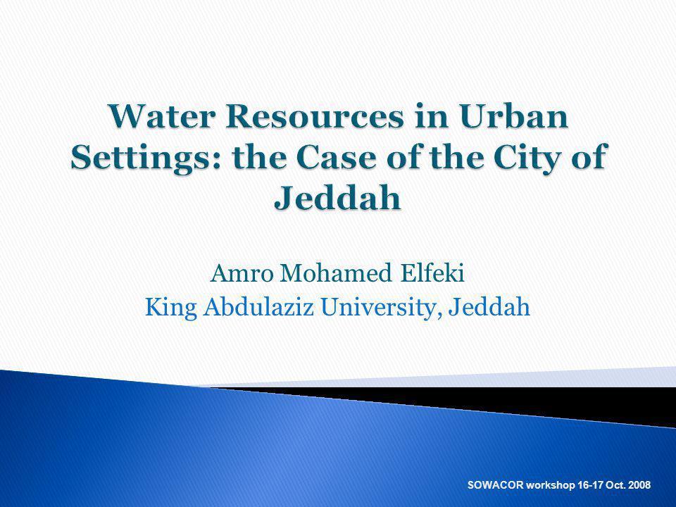 Amro Mohamed Elfeki King Abdulaziz University, Jeddah SOWACOR workshop 16-17 Oct. 2008