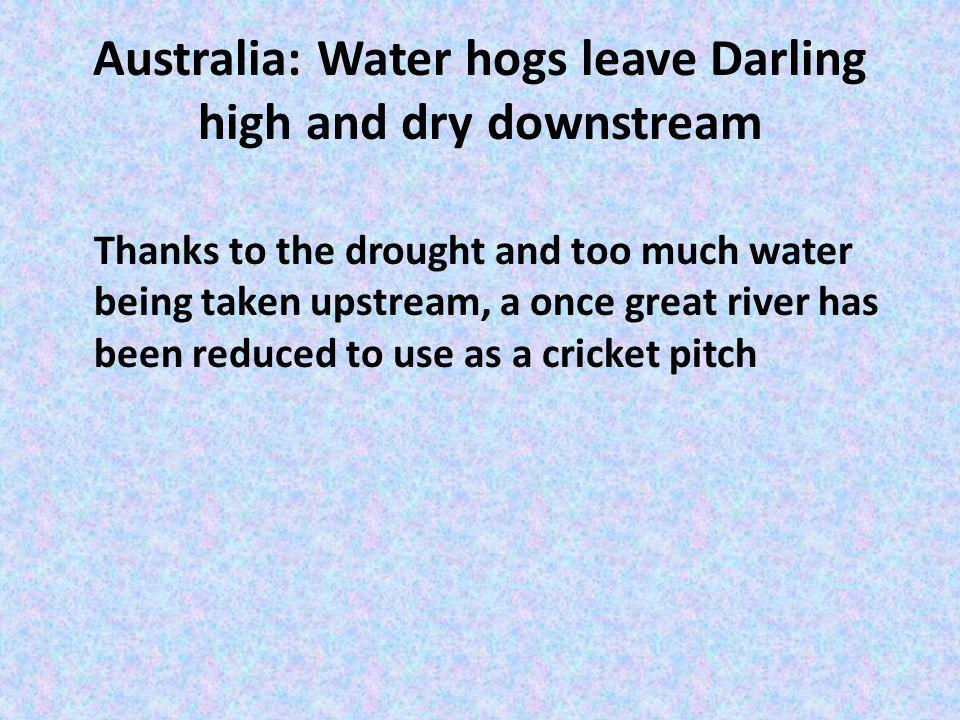 Australia: Water hogs leave Darling high and dry downstream Thanks to the drought and too much water being taken upstream, a once great river has been reduced to use as a cricket pitch