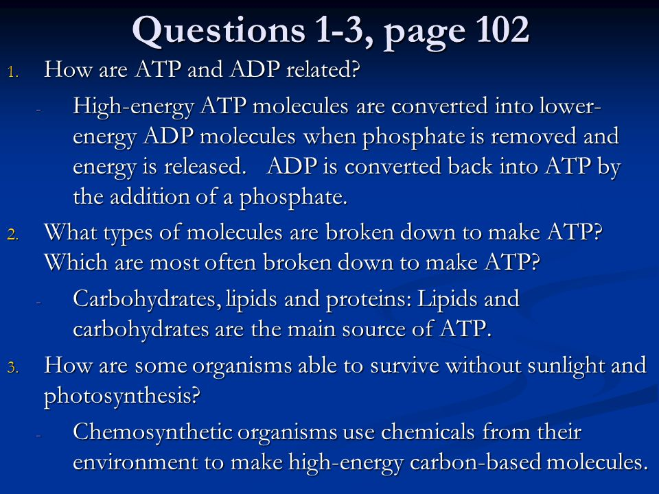 Questions 4-6 4.Describe how you do not get energy directly from the food that you eat.