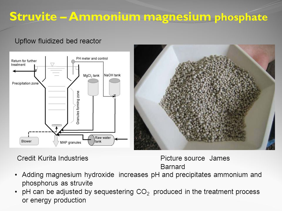 Picture source James Barnard Struvite – Ammonium magnesium phosphate Adding magnesium hydroxide increases pH and precipitates ammonium and phosphorus as struvite pH can be adjusted by sequestering CO 2 produced in the treatment process or energy production Credit Kurita Industries Upflow fluidized bed reactor