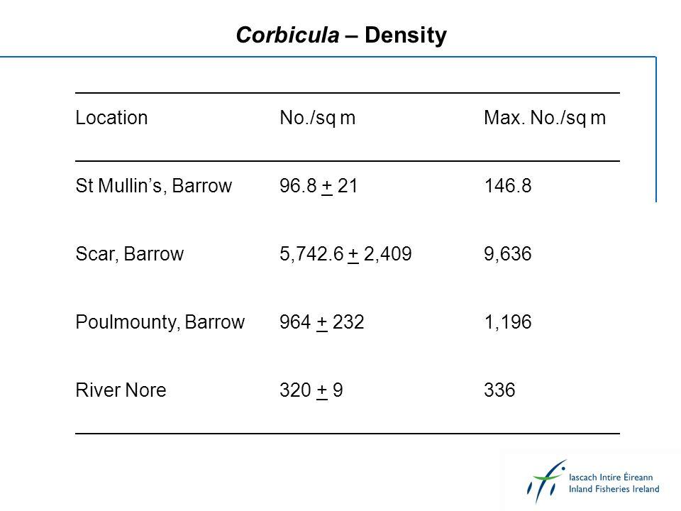 Corbicula – Density LocationNo./sq mMax. No./sq m St Mullins, Barrow96.8 + 21146.8 Scar, Barrow5,742.6 + 2,4099,636 Poulmounty, Barrow964 + 2321,196 R