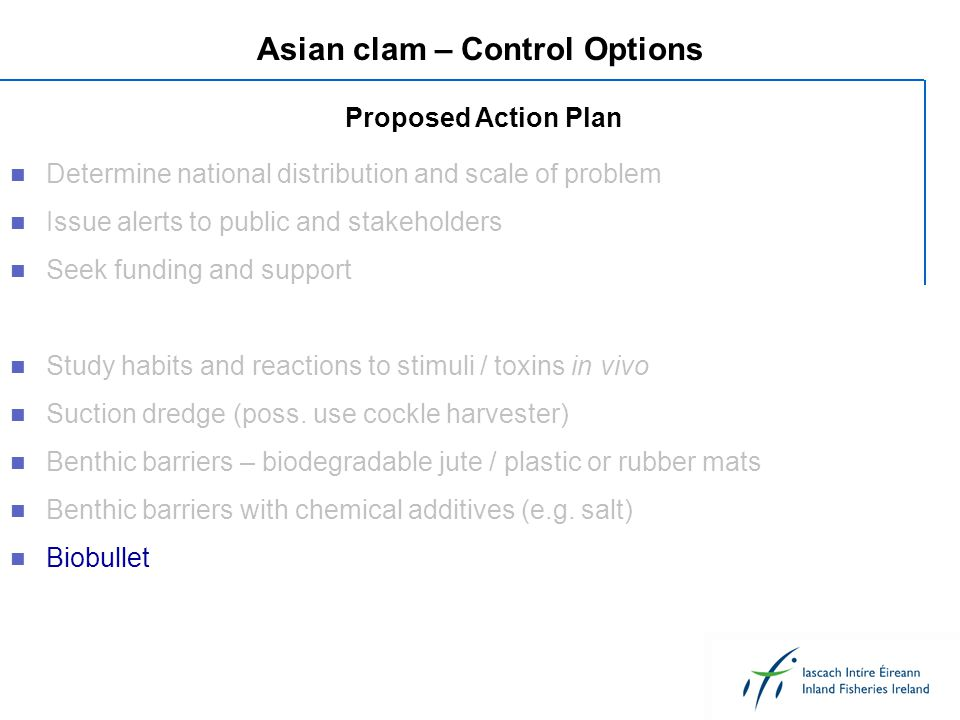 Asian clam – Control Options Determine national distribution and scale of problem Issue alerts to public and stakeholders Seek funding and support Stu
