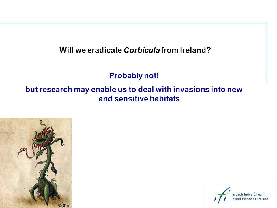 Will we eradicate Corbicula from Ireland? Probably not! but research may enable us to deal with invasions into new and sensitive habitats