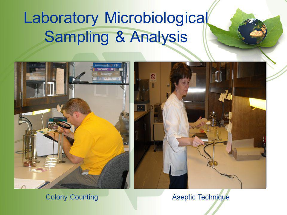 Laboratory Microbiological Sampling & Analysis Colony CountingAseptic Technique
