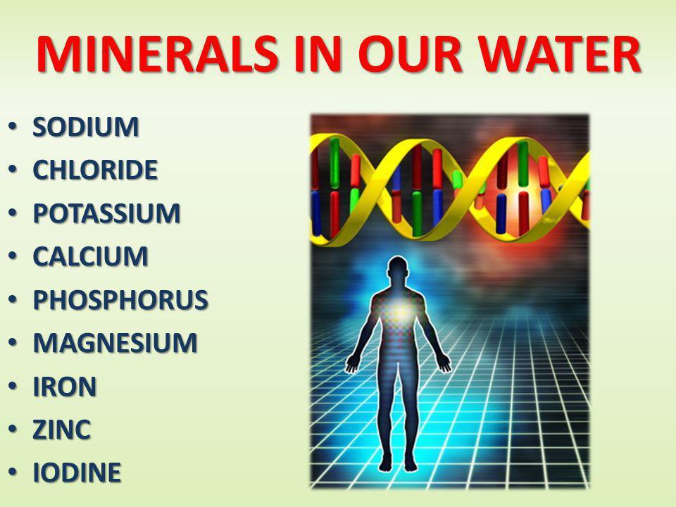 MINERALS IN OUR WATER SODIUM SODIUM CHLORIDE CHLORIDE POTASSIUM POTASSIUM CALCIUM CALCIUM PHOSPHORUS PHOSPHORUS MAGNESIUM MAGNESIUM IRON IRON ZINC ZINC IODINE IODINE