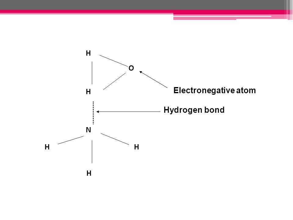 H H H HH O N Electronegative atom Hydrogen bond