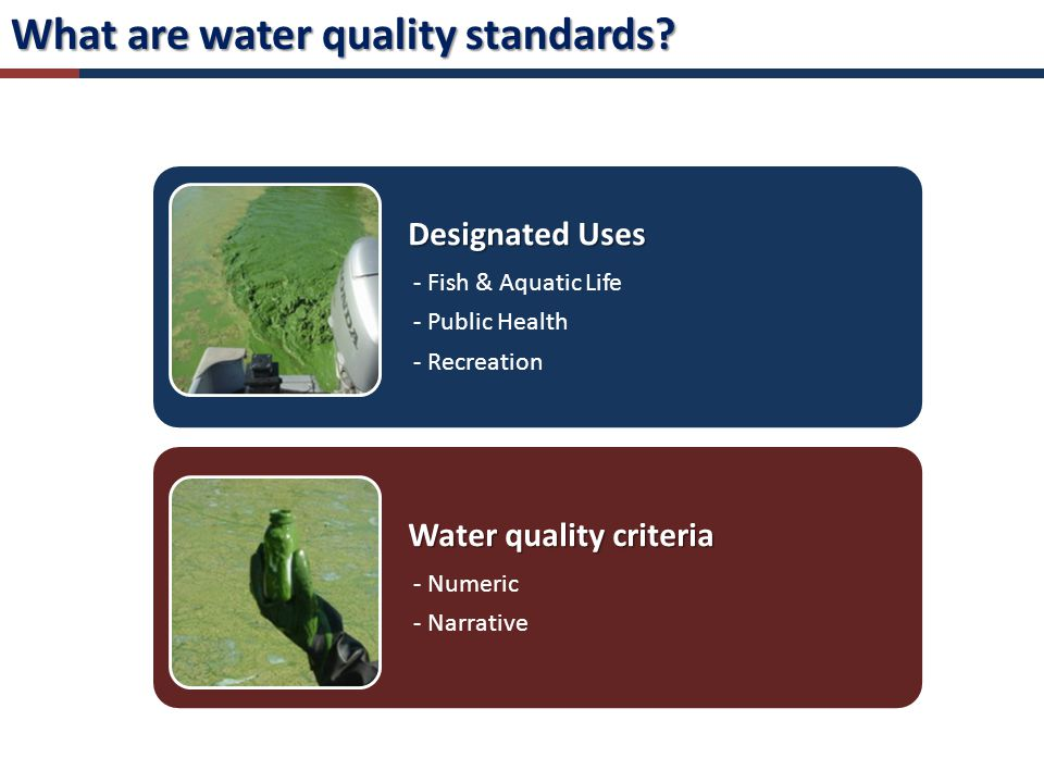 Designated Uses - Fish & Aquatic Life - Public Health - Recreation Water quality criteria - Numeric - Narrative What are water quality standards