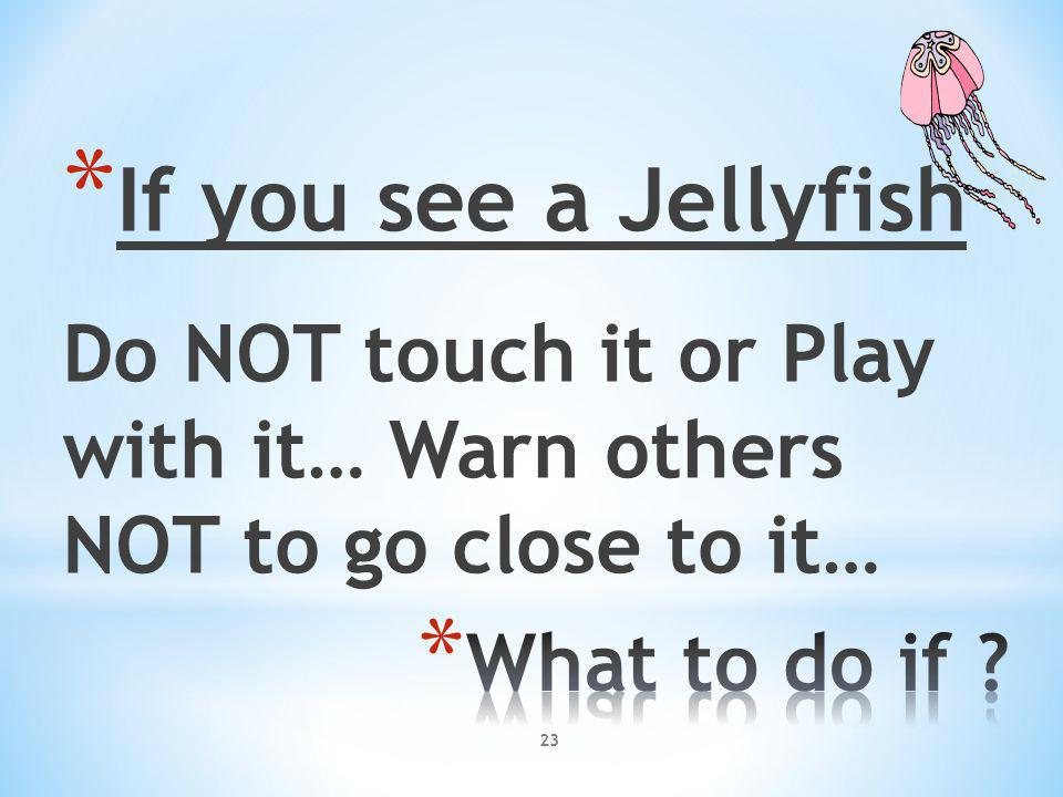23 * If you see a Jellyfish Do NOT touch it or Play with it… Warn others NOT to go close to it…
