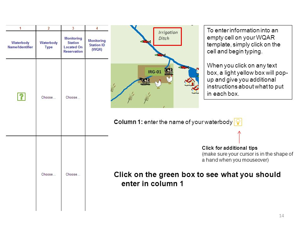 Column 1: enter the name of your waterbody Irrigation Ditch To enter information into an empty cell on your WQAR template, simply click on the cell and begin typing.